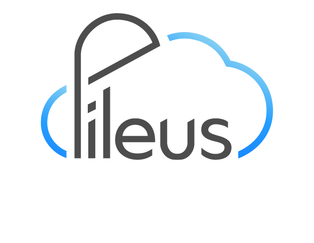 pileus__Linkedin_profile (1)-1